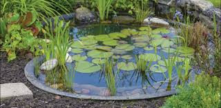 laguna ponds suppliers of pond pumps filters and accessories