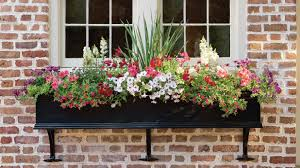 Window Box For Herbs Container Gardening Southern Living