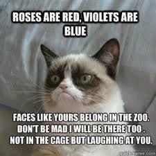 Funny Meme Jokes - best 25 funny jokes ideas on pinterest jokes good jokes and