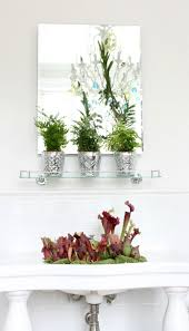 bathroom beautiful awesome bathroom plants by ian drummond photo