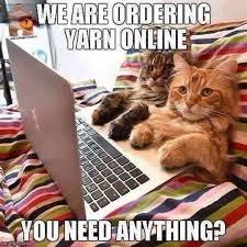 Shopping Meme - cat memes shopping online loldamn com