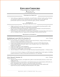 Part Time Jobs Resume by 11 First Time Job Resume Examples Financial Statement Form