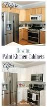How To Repaint Kitchen Cabinet How To Paint Kitchen Cabinets The Latina Next Door