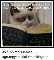 To Kill A Mockingbird Cat Meme - there s nothing in here on how to kill a mocking bird to kill mock