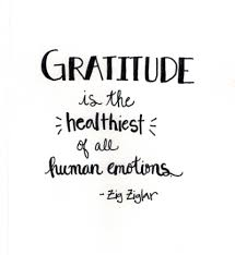 thanksgiving hungry free gratitude quotes to