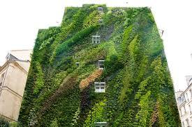 vertical gardens think vertical ideas for the vertical garden fresh by ftd