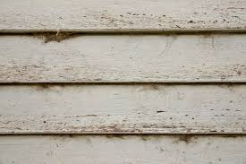 texture home decor wood panel background wall www myfreetextures com free dirty white