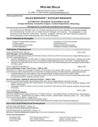 Account Manager Sales Resume Sample Resumes For Sales Executives Car Sales Resume Example