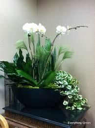 Indoor Plant Arrangements Indoor Container Gardening Ideas The Gardening Small Space