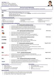 sample resume for a chef classy design executive chef resume 5