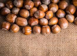 native plants wisconsin hazelnut growers in wisconsin get cracking wiscontext