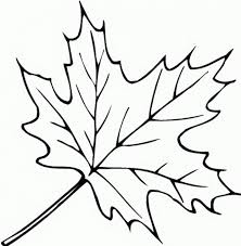 fall autumn leaves coloring page at coloring pages shimosoku biz