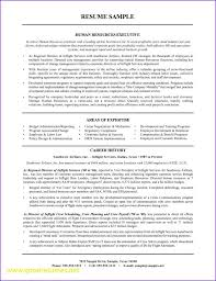 sle resume for job application in india sle hr manager resume human resources objective 15 format india