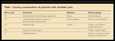 Biceps Reflexes Identifying Shoulder Pain In Older Patients The History Physical