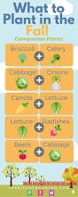 582 best vegetable gardening images on pinterest gardening
