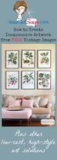 best 25 framed botanical prints ideas on pinterest vintage