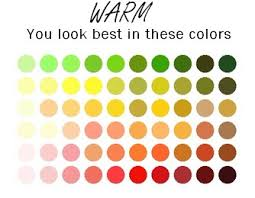 Warm Colors Seasonal Color Analysis Troubleshooting Cool Despite Warm