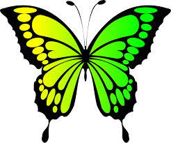 green butterfly clipart u2013 clipart free download