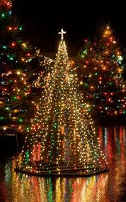596 best christmas lights images on pinterest christmas lights