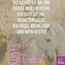 pferde spr che pferdesprüche www pferdefuttershop de www my mash de