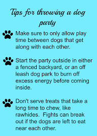 how to throw a dog holiday party
