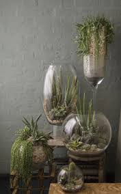 plant glass planters stunning glass wall planters wine glass