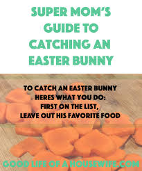 Good Housewife Guide How To Catch An Easter Bunny Good Life Of A Housewife Modern