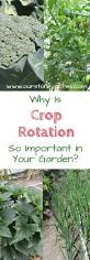the importance of crop rotation in the home garden stoney acres