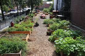 roll out vegetable garden community gardens grownyc