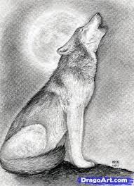 learn how to draw a howling wolf realistic drawing technique