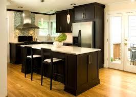 Dark Grey Kitchen Cabinets Bathroom Dark Cabinets In Kitchen Astounding Dark And Black