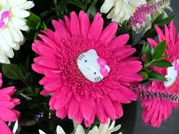 San Diego Flower Delivery Kitty Gerbera Daisy Bowl Products Local Florist In San Diego