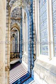 climbing the cathedral of st john the divine visions of my world