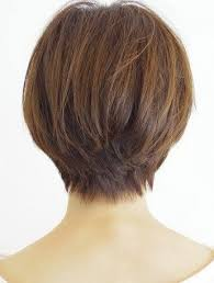 back view of wedge haircut best 25 wedge haircut ideas on pinterest ladies hairstyles over