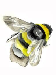 78 best bees images on pinterest draw drawing and drawings