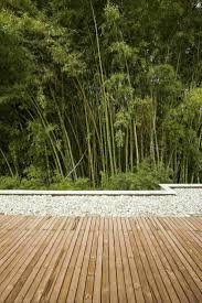 Contemporary House Designs 704 Best Contemporary Garden Inspiration Images On Pinterest