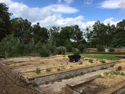 the walled garden coming together