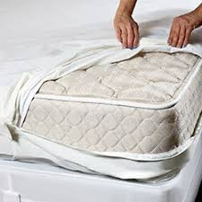 Bed Bug Crib Mattress Cover Best Bed Bug Mattress Encasement Reviews 2018 Buyers Guide The