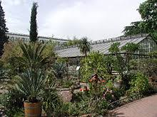 garten köln flora und botanischer garten k禧ln