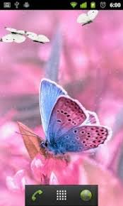 pink butterfly wallpapers android apps on play
