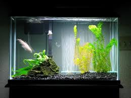 Fancy Idea Christmas Fish Tank Decorations For Chritsmas Decor