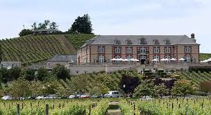 domaine carneros about chateau between chagne sparkling wine trail wine country getaways
