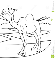 camel coloring page gallery of large size of coloring pages