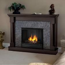 gel fireplace insert cpmpublishingcom