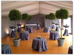Topiaries Wedding - garden metal arch patio decor climbing plants flowers roses