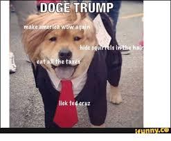 Make Doge Meme - doge trump make america wow again hide squmrels in the hair eat a