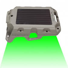 green light for hog hunting wildgame innovations moonshine 2 feeder hog light
