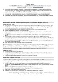Hr Consultant Resume Sample by Sap Logistics Execution Consultant Cv