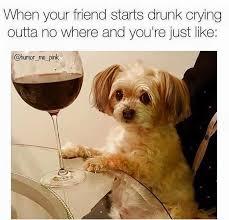 wine selfies on twitter wine humor when your friend starts drunk