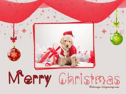 dog christmas cards 365greetings com